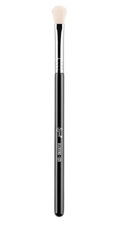 Sigma E25 - Blending Brush - Chrome